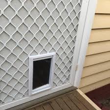dog doors adelaide pet doors