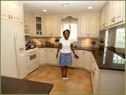 Refaced Kitchen Cabinets Kitchen Cabinet Refacing Before And After Photos Home Design Ideas