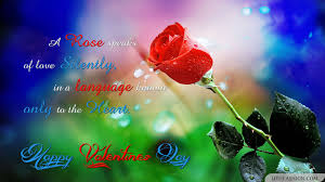 Love Rose Wallpaper Free Download ...