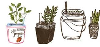 Good How To Make A Self Irrigating Planter With Yogurt Containers « The Secret  Yumiverse :: WonderHowTo