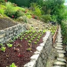 stone raised garden beds wonderful stone raised garden beds designs photo ideas bed design raised garden