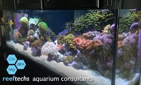 office aquarium. Gallery-office-aquarium Office Aquarium