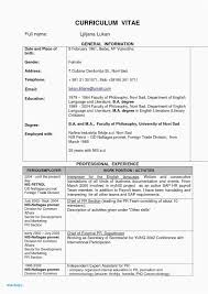 To Resumes 30 Examples Cover Letter To Resume Gallery Fresh Resume Sample