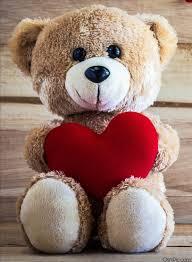 whatsapp dp love wallpaper love teddy bear