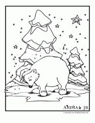 Small Picture Winter Animal Coloring Pages Animal Jr