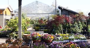 have a k inside to see some of the garden beauty and visit today to see the irresistible blooms in all their color glory