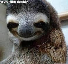 Meme Maker - Are you feeling sluggish? Meme Maker! via Relatably.com