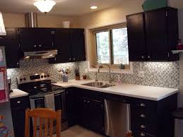 Small Kitchen Remodeling Fashionable Kitchen Remodeling Ideas On A Small Budget With New
