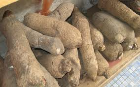 Image result for YAM