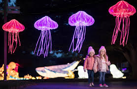 Wild Lights Dublin Zoo Promo Code Dublin Zoo Reveal First Pictures Of Wild Lights 2018 With