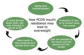Insulin Resistance Food Chart Pcos Diet Guideline Natural Treatment For Insulin Resistance