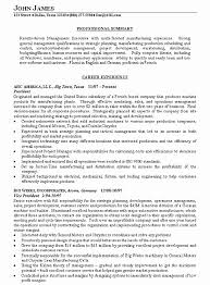Resume Summary Statement Examples Adorable Sample Resume Summary Statements About Experience New Resume