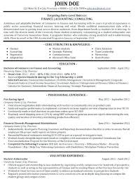 Sample Technology Consultant Resume Resume Sample Directory