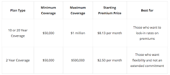 20 Year Term Life Insurance Rate Chart Bestow Review Is Their Term Life Insurance Right For You
