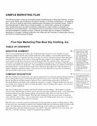 Business Financial Plan Template How To Make Projections For A Pla
