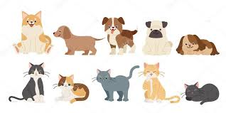 cute funny cartoon dogs and cats on
