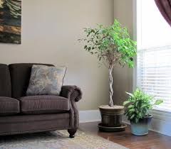Living Room Corner Decor Living Room Corner Decor Images A1houstoncom Small For Living Room