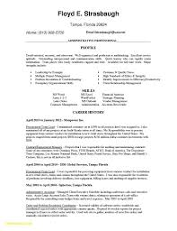 Word Document Resume Template Free Beautiful 28 Traditional Resume