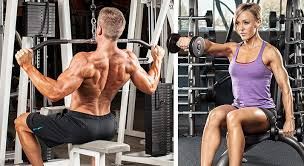 program pdf bodybuilding beginners image programs workout pdf gym steps por workout most