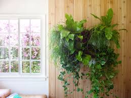 All New Woolly Reimagined Living Wall Planter The New Modular