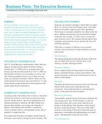 executive business plan template company executive summary template