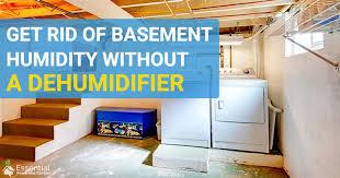 basement without a dehumidifier