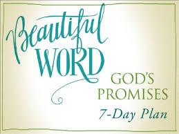 God's Promises NIV Beautiful Word Bible Verse Art Mesmerizing Promise Bible Verses