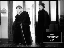 elephant man essay essay on the elephant biographical narrative  i have to write an essay about the movie the elephant man i have to write