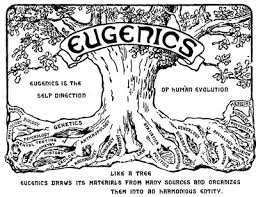 us slave a fatal impact eugenics social darwinism and genocide during the 19th century racial categorization took on a pseudoscientific stance this program shows how the academic racism of the period helped to sp