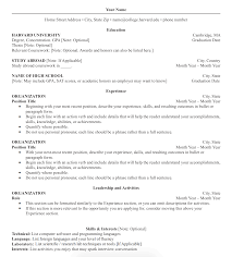 Amazing How To Do A Professional Resume Template