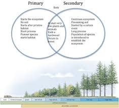Primary Succession And Secondary Succession Venn Diagram Primary Vs Secondary Succession Habitats