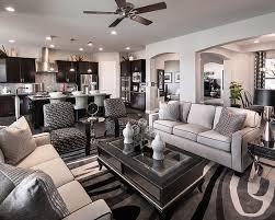 beautiful grey interior design ideas pictures decorating design
