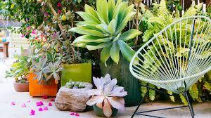 12 Gorgeous Garden Ideas  Succulents Garden Garden Ideas And Succulent Container Garden Plans