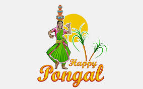 images of pongal festival wishes and greetings cards in tamil images of pongal celebration