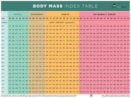 Body Index Chart