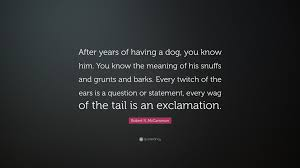 "Quotes For Him Enchanting Robert R McCammon Quote ""After years of having a dog you know him"
