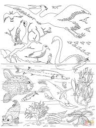 Small Picture 5th Day of Creation coloring page Free Printable Coloring Pages