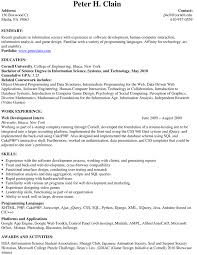 Art Analysis Essay Structure Sample Accountants Resume Type My