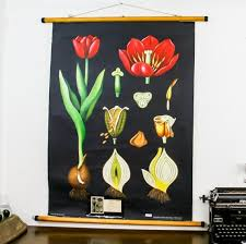 Add Color To The Wall With This Stunning Vintage Botanical