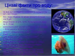 Вода це життя презентація з природознавства  Цікаві факти про воду за все життя людина споживає в середньому 50 60 т