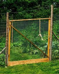 garden fencing. Till The Plot Garden Fencing