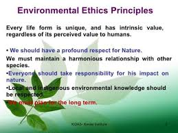 environmental ethics human needs are more important environmental ethics human needs are more important than environmental needs