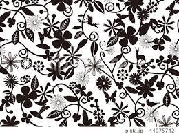 花柄 モノクロ 白 黒 灰 白背景のイラスト素材 44075742 Pixta