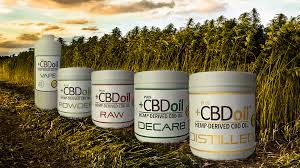 Image result for wholesale  cbd oils