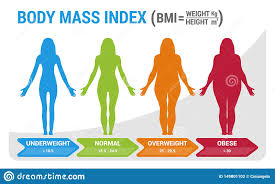 Bmi Underweight Overweight Chart Bmi Body Mass Index Infographic Chart Vector Illustration