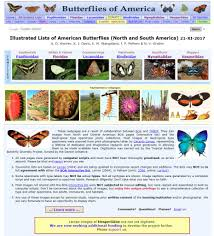 Heliconius Homepage Complete Neotropical Butterfly List