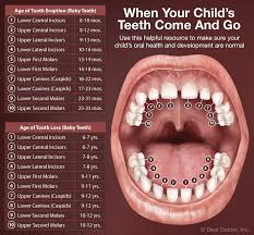 2 Year Old Teeth Chart Early Dental Care Happy Smiles Kids Dentistry San Diego