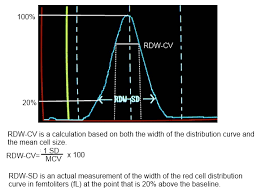 Red Blood Cell Distribution Width (Rdw): Definition And Calculation ...
