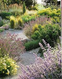 Natural Landscape: Re-imbrace