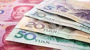 Resultado de imagen de fotos de yuanes